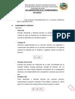 TERMOQUIMICA INF. 03 TERMODINAMICA DE GASES.pdf