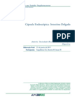 Cápsula Endoscópica - Intestino Delgado
