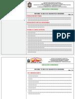 Informe Tecnico de Diagnostico (Trabajo de Investigación)
