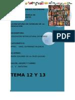 TEMA 12 y 13.docx