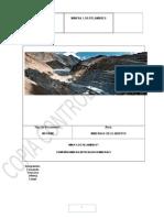 Informe Minera Los Pelambres