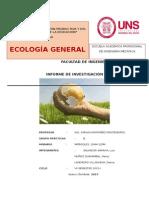 Informe - Energia y Medio Ambiente