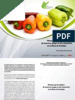 Manejo Agroecologico de Insectos Plagas en Aji y Pimenton