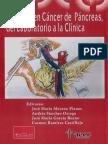 Avances en El Cancer de Pancreas