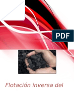 Flotacion Inversa Carbon