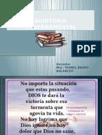 Auditoria Gubern. s1.1