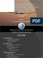 FSI Simulation of HALE UAV