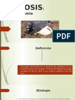 CETOSIS presentación(1).pptx
