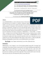 1 ijahm.pdf