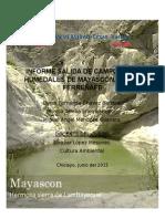 Informe Los Humedales de Mayascón