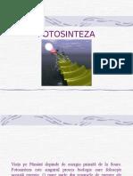 curs-FOTOSINTEZA-comprimat.ppt