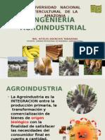 Ingeniería Agroindustrial Ok