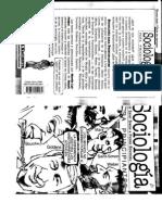 Sociología Para Principiantes - Saint Sim0n a Pierre Bourdieu