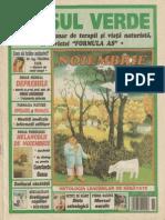Asul Verde - Nr. 9, 2004