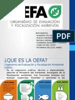 trabajo-ambiental.pptx