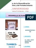 Desarrollo de Plan de Negocios i