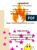 Seguridda Industrial PRECENTASION
