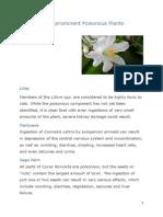 Some Prominent Poisonous Plants