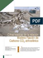 Fijacion carbono leña