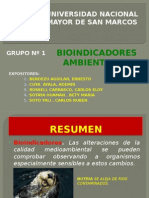 BIOINDICADORES AMBIENTALES  GRUPO N°1 -21.05.2015. final