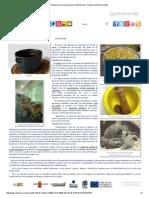 Introducción a La Gastronomía- Elaboración - Región de Murcia Digital