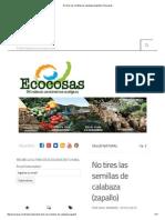 No tires las semillas de calabaza (zapallo) _ Ecocosas.pdf