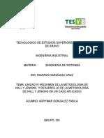 METODOLOGIA-DE-HALL-Y-JENKINS.docx
