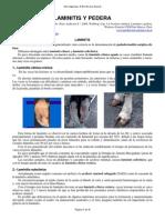 laminitis y podales.pdf