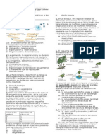 Evaluacion Reproduccion Asexual y en Plantas