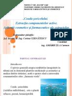 Amariuti Carmen Prezentare Disertatie