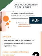 AULA 1_ ORIGEM E EVOLUÇÃO DA CÉLULA_20130218232400.pdf