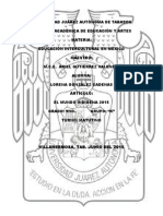 Articulo 11 Interculturalidad
