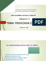 TEMA Fisiologia Celular.pdf