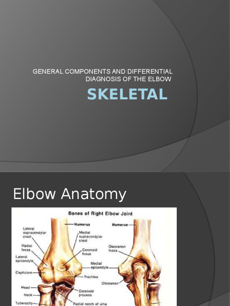 elbow template skeletal | Elbow | Joint
