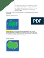 Tipo Arrecifes (MEDIO AMBIENTE)