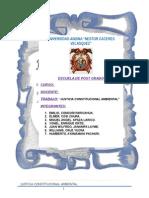 LA JUSTICIA CONSTITUCIONAL AMBIENTAL EN EL PERU
