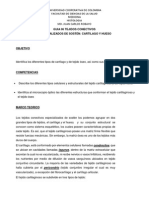 GUIA 06 TEJIDO CARTILAGINOSO Y OSEO.pdf
