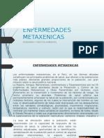 ENFERMEDADES METAXENICAS