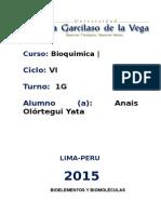 bioca 1