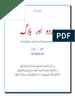 Urdu and Blog 1.2 by M Bilal M