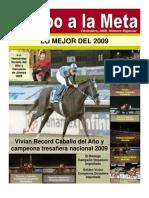 Revista Especial de Enero 2010 Rumbo a La Meta