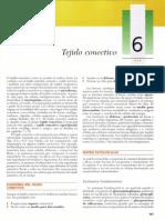 Gartner, Leslie P. - Texto Atlas de Histologia, 2da Edición [6 Tejido Conectivo]