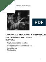 DIVORCIO, NULIDAD Y SEPARACIÓN - PATRICIO VELIZ