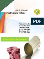presentasi Clostridium sp