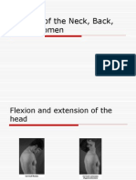 Muscles of the Neck, Back, Abdomen