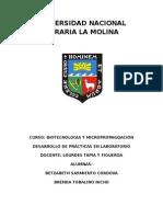infome-de-practicas-de-biotecfinal.docx