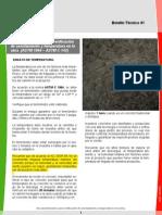 BOLETIN - Asentamiento y temperatura en.pdf