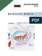 Guía de Biología Pedro Valdivia