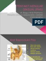 Penyakit Menular Seksual (Pms)