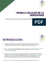 1. Modelo Celular